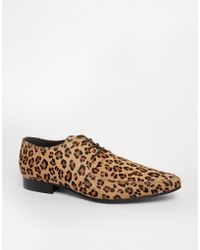 Aldo Kurtis Leopard Derby Shoes - Lyst