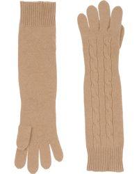Pink Pony - Gloves - Lyst