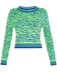 House Of Holland Zebra-Intarsia Knit Crop Top - Lyst