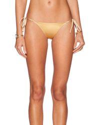 Charlie By Matthew Zink Charlie String Bikini Bottom - Lyst