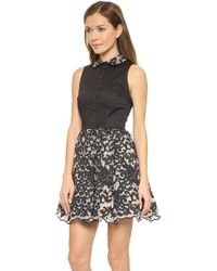Alice + Olivia Avery Collared Pouf Dress - Black/Cream - Lyst