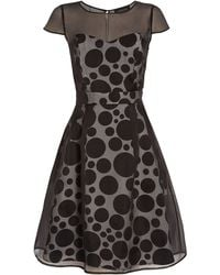 Jaeger Variagated Spot Silk Organza Dress - Lyst