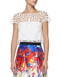 Milly Fil Coupe Illusion Crop Top - Lyst