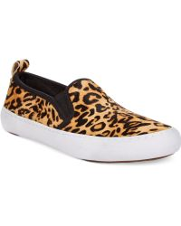 Guess Brown  Cangelay Sneakers - Lyst