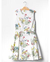 Gap Floral Fit & Flare Dress - Lyst