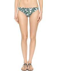 Tory Burch Issy Hipster Bikini Bottoms - Vine Issy Small - Lyst