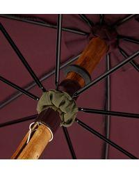 Francesco Maglia Chestnut Wood-handle Umbrella - Lyst