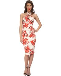 Stop Staring! Acacia Fitted Dress - Lyst