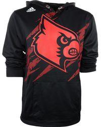 Adidas Mens Louisville Cardinals Aftershock Pu Hoodie - Lyst