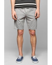 BDG - French Terry Short - Lyst