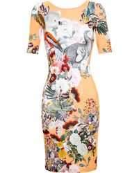 Mary Katrantzou Fitted Dress With Wildlife Print - Lyst