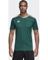 adidas Camiseta Entrada18 - Verde
