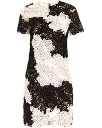Erdem Nadene Bi-colour Lace Appliqué Dress - Lyst