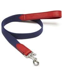 Mulberry 3cm Dog Lead - Lyst