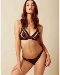 Agent Provocateur - Mandi Thong Brown And Blue - Lyst