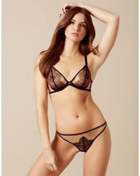 c64ebf564a Agent Provocateur - Fantazia Thong Nude And Black - Lyst