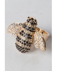 AKIRA - Kwane Bee Cocktail Ring - Lyst