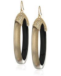Alexis Bittar - Pave And Oval Lucite Hoop Ear Wire Drop Earrings - Lyst