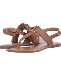 3685cbafc4102 Lyst - Tommy Hilfiger Women S Laycie Thong Sandals in Black