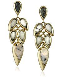 """Cole Haan - """"twilight"""" Drama Stone Cluster Teardrop Earrings - Lyst"""