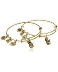 ALEX AND ANI - S Charity By Design Side By Side Set Of 2 Expandable Wire Bangles - Lyst