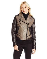 Laundry by Shelli Segal - Laundry Two-tone Leather Moto Jacket - Lyst