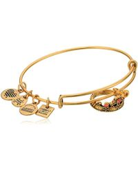 ALEX AND ANI - Charity By Design, Queen's Crown Bangle Bracelet - Lyst