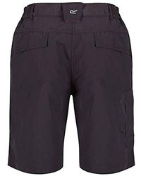 Regatta Chaska Lightweight Water Repellent Uv Protection Active Hiking Shorts - Multicolour