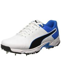 3bc5225f0c 19.2 Spike Cricket Shoes