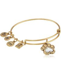 ALEX AND ANI - Charity By Design, Prints Of Love Expandable Bangle Bracelet - Lyst