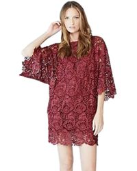 Blaque Label | Lace Mini Dress In Wine | Lyst