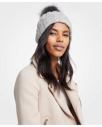 Ann Taylor - Ribbed Knit Hat - Lyst