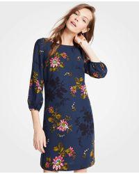 Ann Taylor - Petite Floral Lantern Sleeve Shift Dress - Lyst