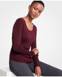 Ann Taylor - Ribbed Curved Hem Sweater - Lyst