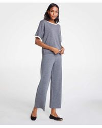 Ann Taylor - Wool Knit Wide Leg Pants - Lyst