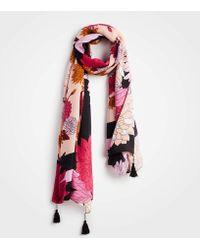 Ann Taylor - Autumnal Floral Scarf - Lyst