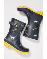 Joules - Molly Short Rain Boots - Lyst