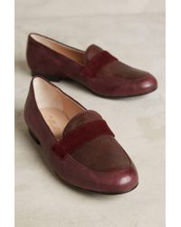 Miss Albright - Colorblock Loafers - Lyst