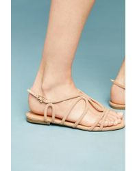 Vicenza - Strappy Sandals - Lyst