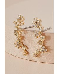 Anthropologie Wisteria Climber Earrings