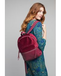 Liebeskind - Allie Velvet Backpack - Lyst