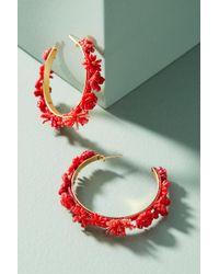 Mishky - Morobia Floral Hoop Earrings - Lyst