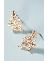 Serefina - Leaf Post Earrings - Lyst