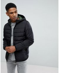 Jack & Jones - Padded Parka - Lyst