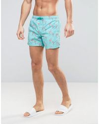 Mango - Man Swim Shorts In Blue Famingo Print - Lyst