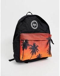 fd312d8d6ba ASOS Backpack In Black With Nobody Cares Print And Palm Tree in ...
