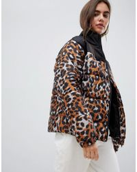 Daisy Street - Padded Jacket With Ring Pull In Leopard Print - Lyst