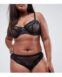 ASOS - Asos Design Curve Lizzie Dobby Spot & Lace Deep Hipster Bikini Bottom - Lyst