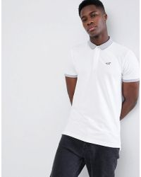 Hollister - Contrast Detail Collar Seagull Logo Pique Polo In White - Lyst