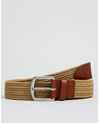 Polo Ralph Lauren - Webbing & Leather Belt Player Logo In Brown - Lyst
